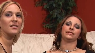 Babes in fishnet stockings get their cookies fixed doggystyle by lone cock